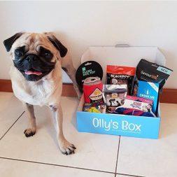 olly box Subscription Box Australia