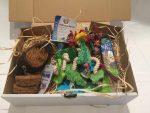 parrot box Subscription Box Australia