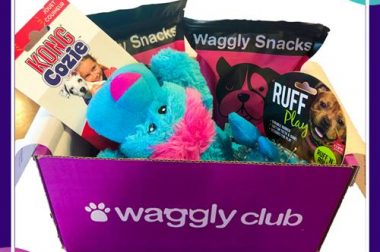 Waggly Club – June 2019 Review