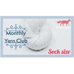 Sock Club by Ruby Farms